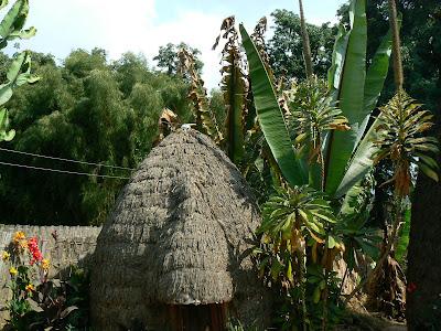 Obiective turistice Etiopia: coliba Dorze