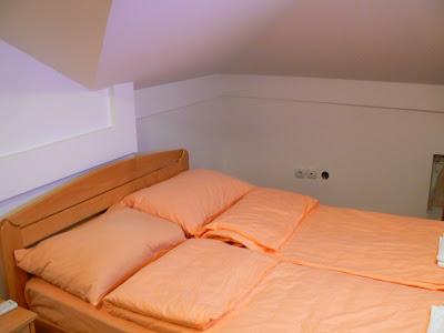 Cazare Serbia: Hostel Forever camera