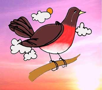 [new-bird.jpg]