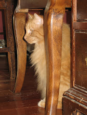 Una Mae Honey Beauty Girl Tropicana