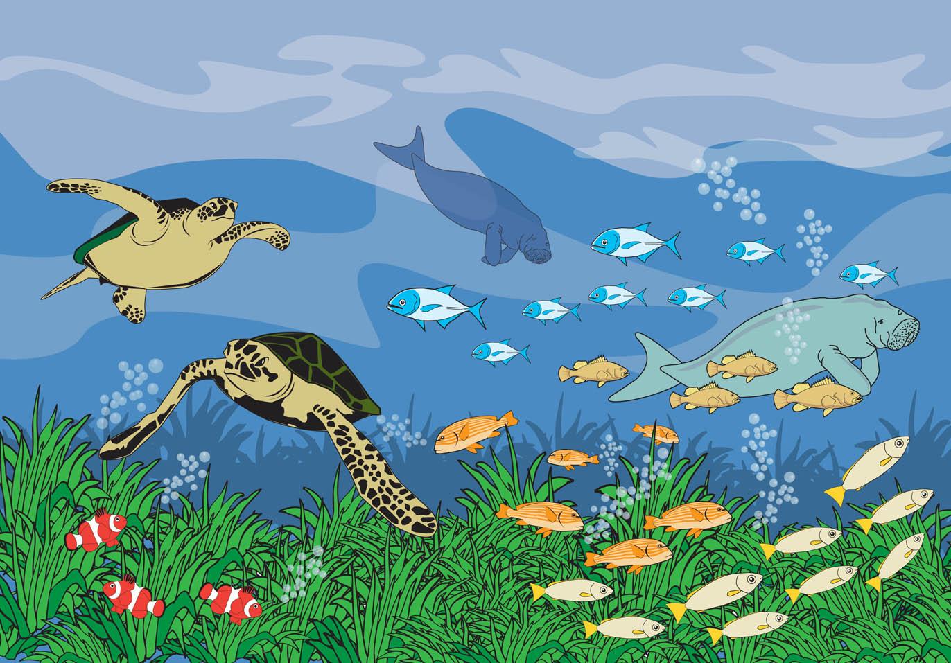Gambar Ilustrasi Bawah Laut
