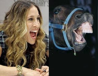Sarah Jessica Parker from Sex and the City looks like a horse