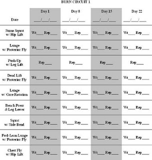 Printables Chalean Extreme Worksheets worksheet chalean extreme worksheets eetrex printables best exercises with the ball weider 8510 exercise chart chart