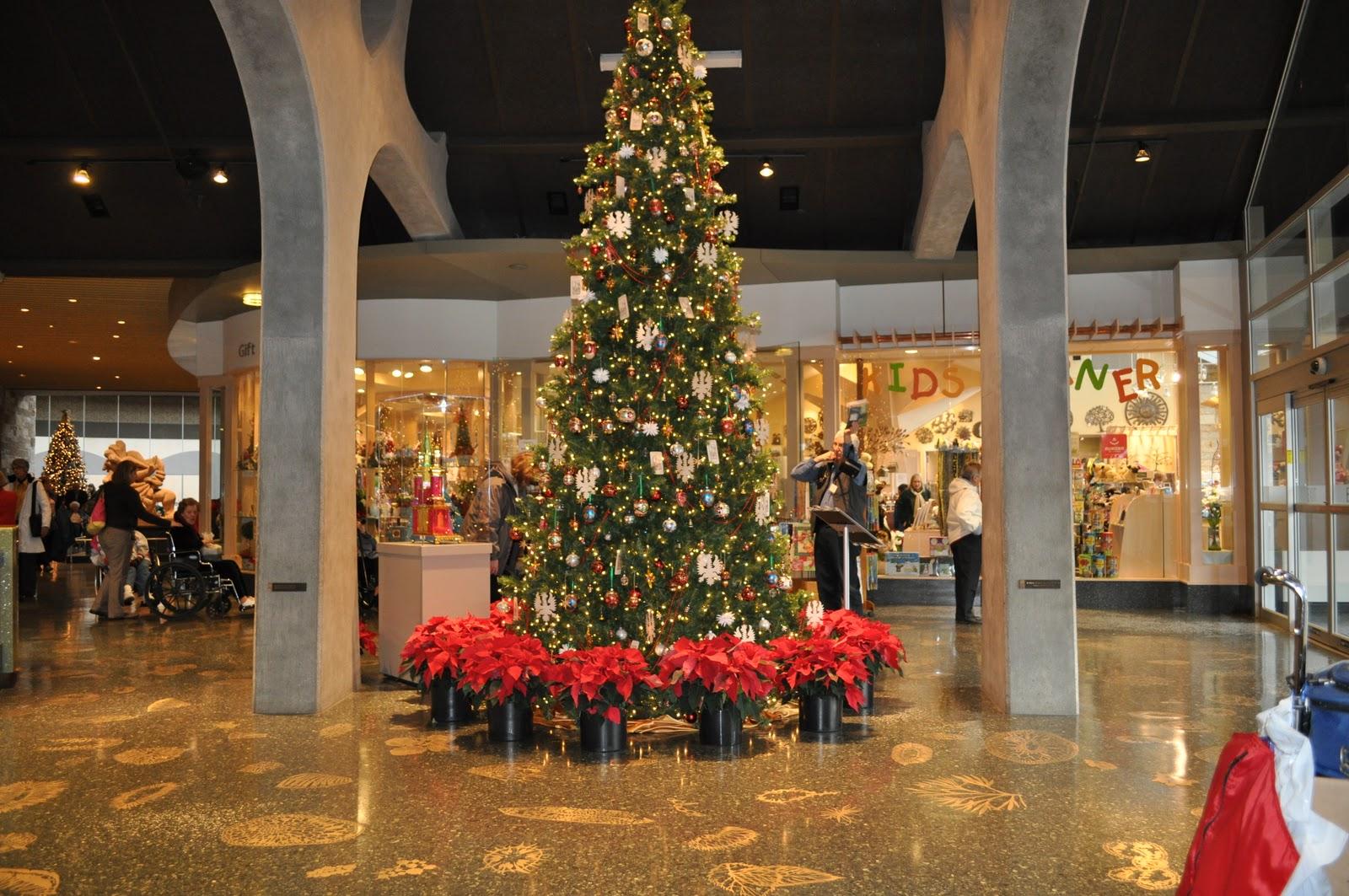 Denver Airport Wall Murals 100 Meijer Christmas Tree Decorations Christmas