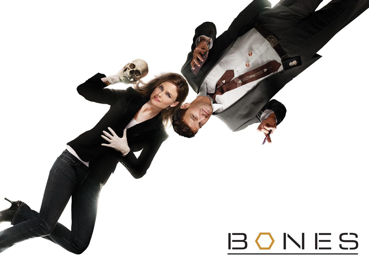 https://i2.wp.com/1.bp.blogspot.com/_DvKhdNIxfgE/TNOAwgdxuRI/AAAAAAAACao/mindipHhYH8/s1600/10-Bones.jpg?resize=510%2C382