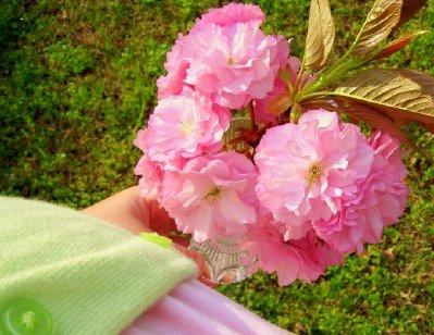 [using-flower-vases-at-home.jpg]