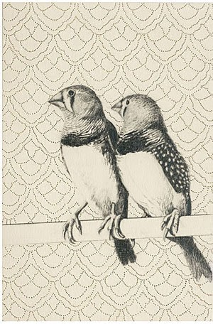 Mobile wallpapers of pencil sketches birds wallpapers art images pictures photo of birds on wallpaper modern