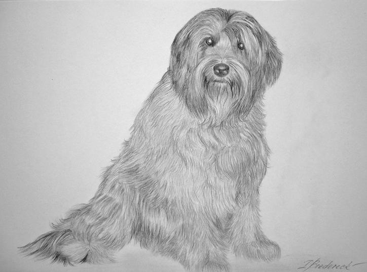 Pencil Arts Of Dog Animal Mobile Sketches Wallpaper Pencil Drawing