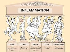 Signos cardinales de la inflamación