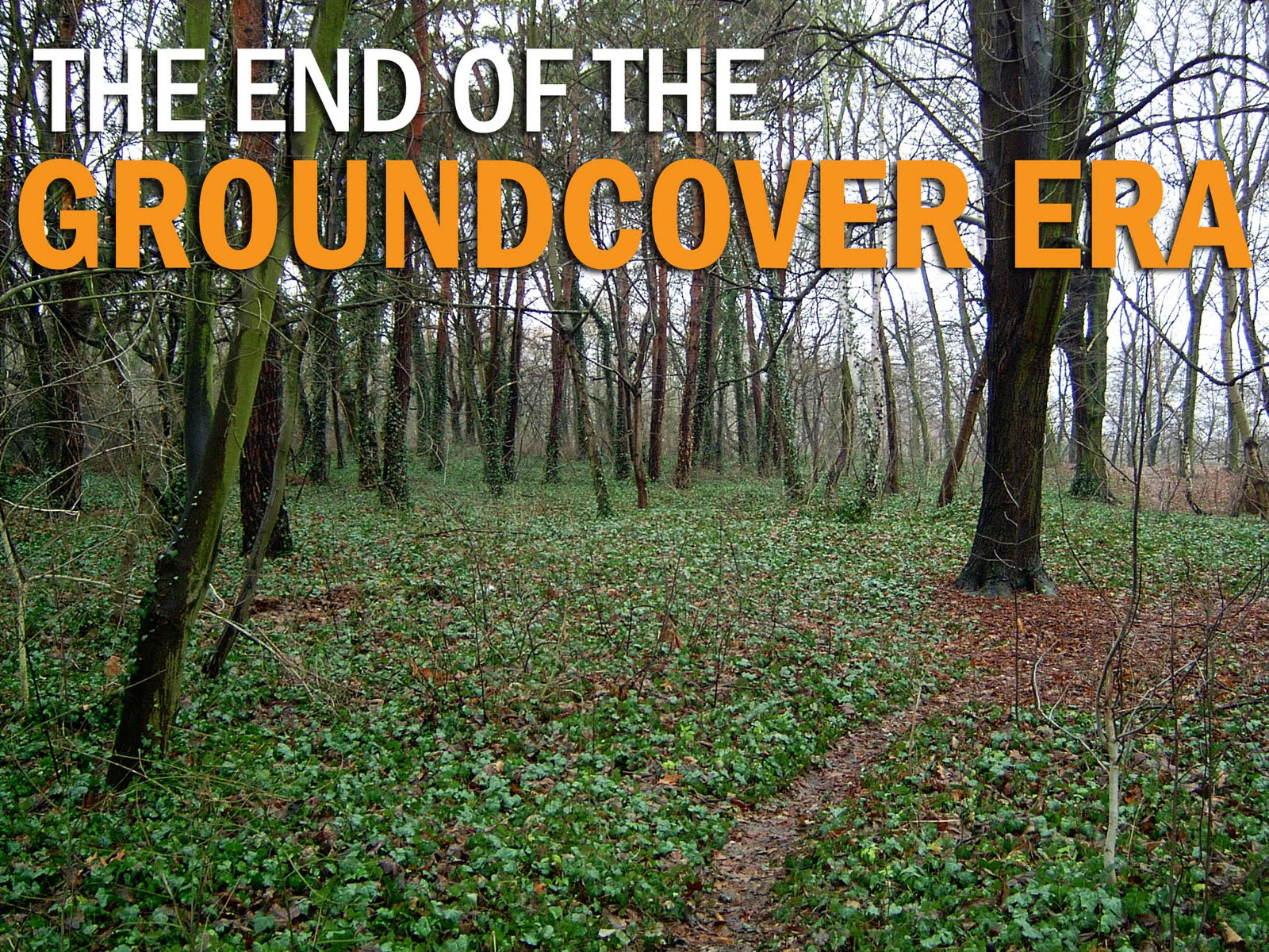 The End Of Groundcovers