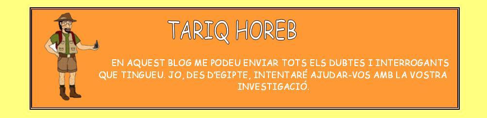 TARIQ HOREB