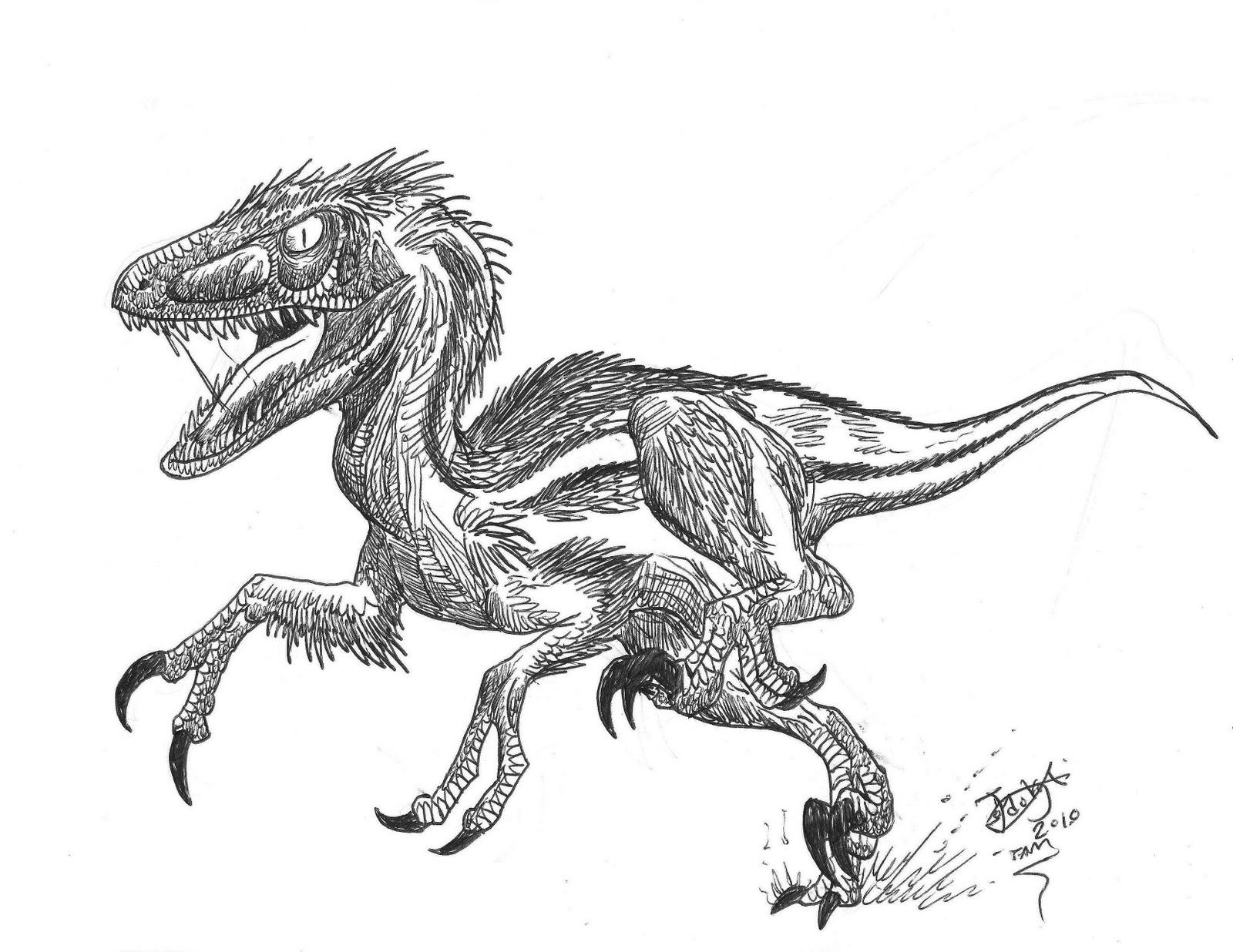 Wolves Vs Velociraptors