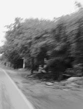 Sobre camino