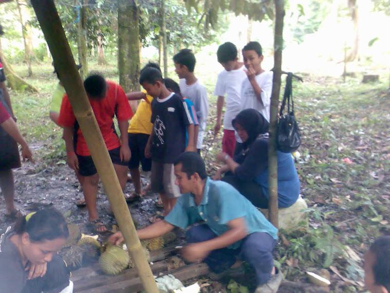 Mengubati kecewa di kebun durian