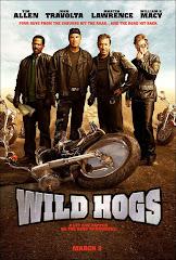 351- Çılgın Motorcular - Wild Hogs (2007) Türkçe Dublaj/DVDRip