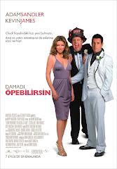 363-Damadı Öpebilirsin Türkçe Dublaj/DVDRip