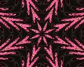 [Bettina+-+stars+from+markers]
