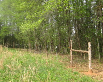 5 Acres & A Dream: Goat Fence: The Home Stretch
