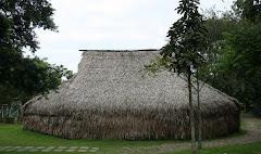 Vivienda del pueblo indigena Yuruti