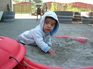 carlos sandbox