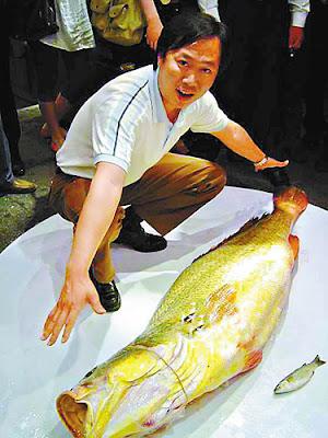 Pemancing rugi, nilai sebenar ikan dijual 50 kali ganda