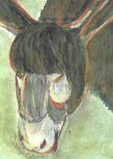 de lelijkete ezel afbeelding