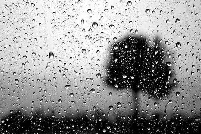 Rain Embellished
