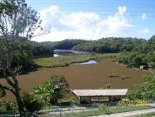 Parque de Pituaçu - Salvador/BA