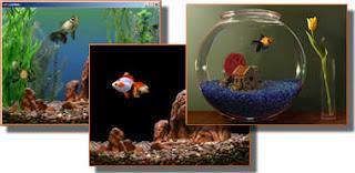 TN GA PC Collection Aquarium ScreenSavers   5 em 1