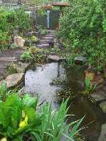 a wildlife garden
