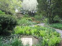 Central Park Shakespeare Garden