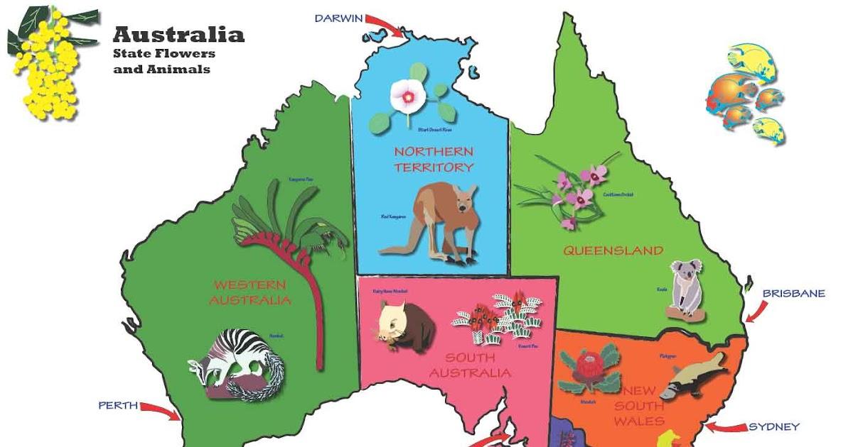 Sel Caffery Kids Map Of Australia
