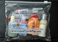 Simple Airport Security Approved Bags For Us Tsa 3 1 1