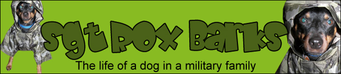 Sgt Rox Barks
