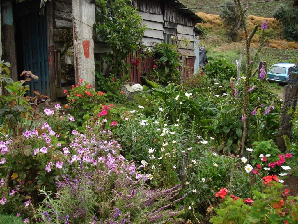 Decoraci n de jardines de campo dise o y decoracion de for Antejardines rusticos