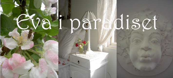 Eva i paradiset-