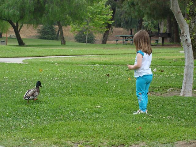 Ralph B. Clark Regional Park, Buena Park - Toddler Trails