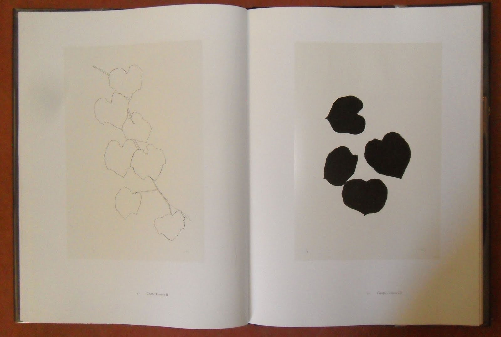 Meredith Nemirov Drawn From Nature The Plant Lithographs