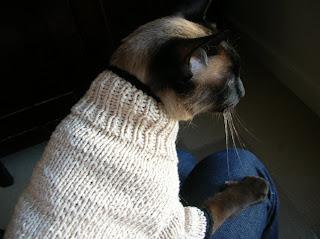 The Yarniad Res Originalis Felis Felix Mandarin Cat Sweater