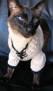 Knitting Patterns For Jumpers For Cats : The Yarniad: Res Originalis: Felis Felix, Mandarin Cat Sweater