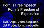 Porn is freedom of expession