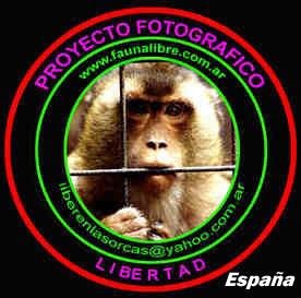 PROYECTO FOTOGRÁFICO LIBERTAD - ESPAÑA