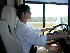 Look who's driving the RV