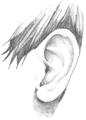 Gambar Telinga : gambar, telinga, THOUGHTS: