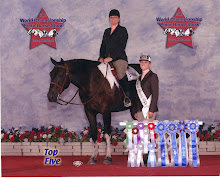 This is my first show horse Blue