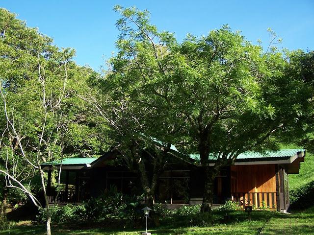 Habitación de El Sapo Dorado en Costa Rica