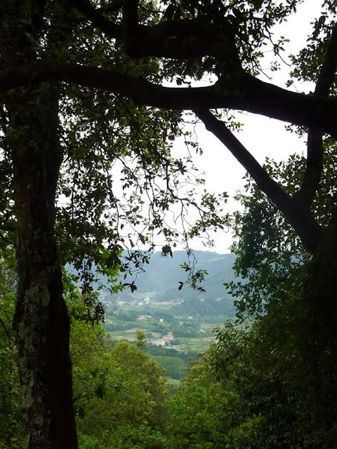 Vista desde la entrada de Santimamiñe