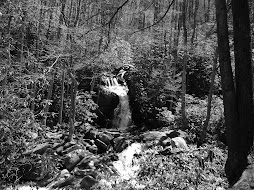Mouse Creek Falls, April 16, 2008