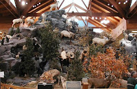 Cabela's Mountain