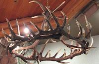 Caribou Chandelier